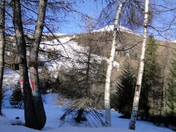 04 2011-01-02 Motto della Scala 003