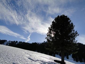 34 2011-02-12 cima Villandro 066
