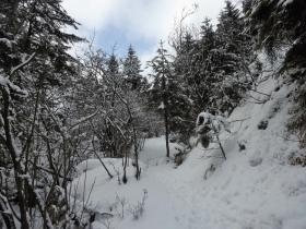 2018-02-11 valli di Gandino 030