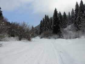 2018-02-11 valli di Gandino 038