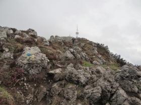 2018-05-20 monti Venturosa e Cancervo (43)